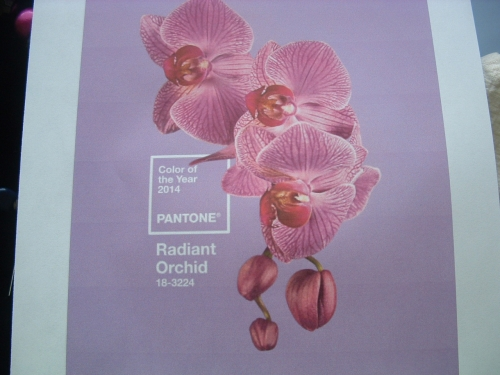 pantone colour of the year 2014 001